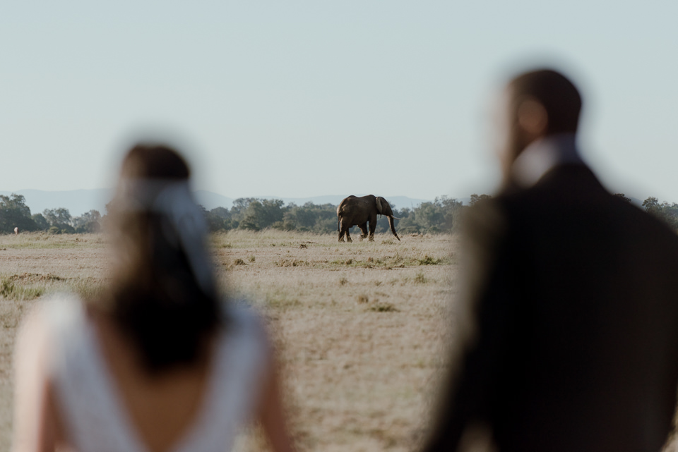best-destination-weddings-48 Best Destination Weddings - Africa Safari Wedding