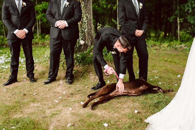 upstate-ny-wedding-photographers-83 Upstate NY Wedding Photographers | New York Backyard Weddings