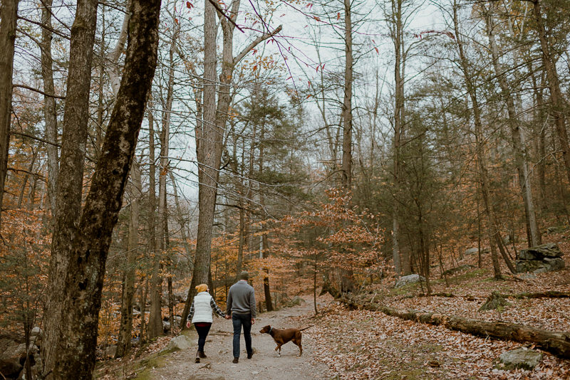 wedding-photographer-ny-25 Wedding Photography NY - Upstate NY Engagement Session