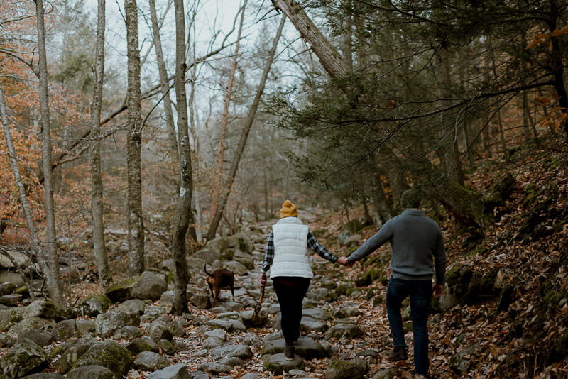 wedding-photographer-ny-5 Wedding Photography NY - Upstate NY Engagement Session